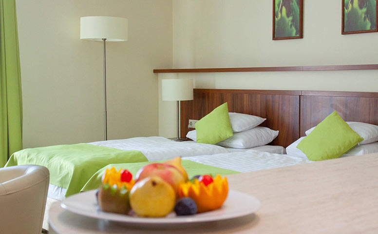 Ginkgo Hotel Standard Szoba
